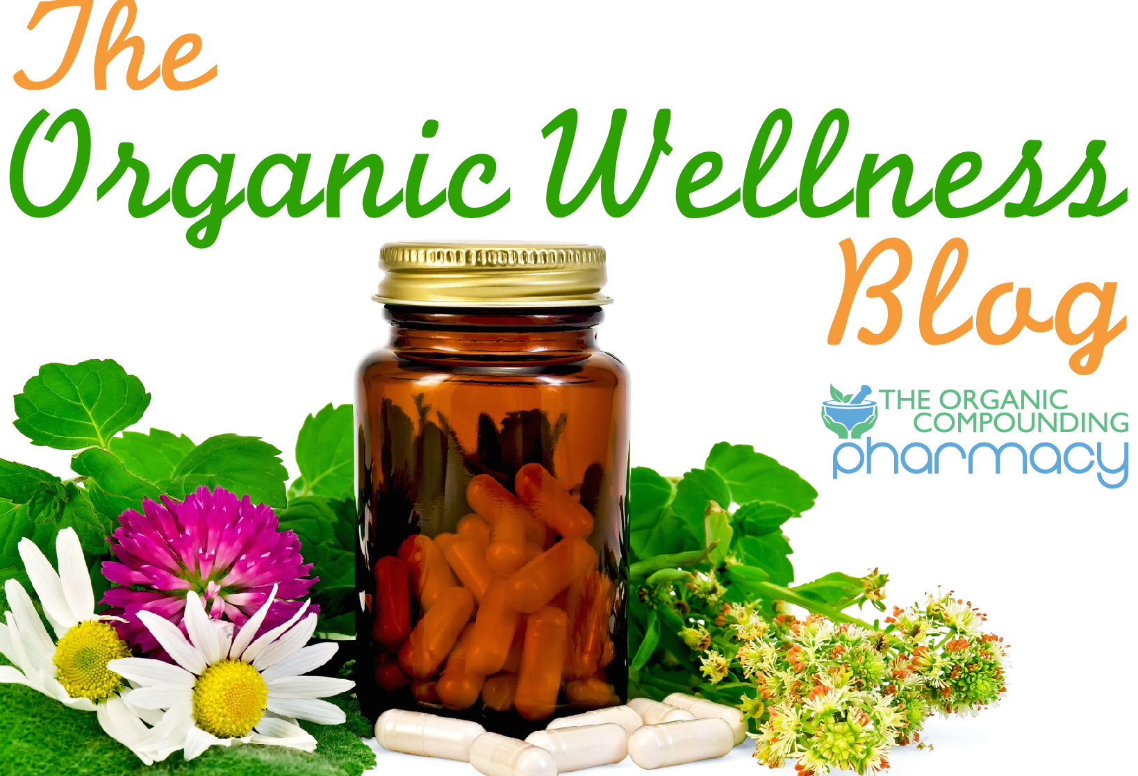 The Organic Wellness Blog